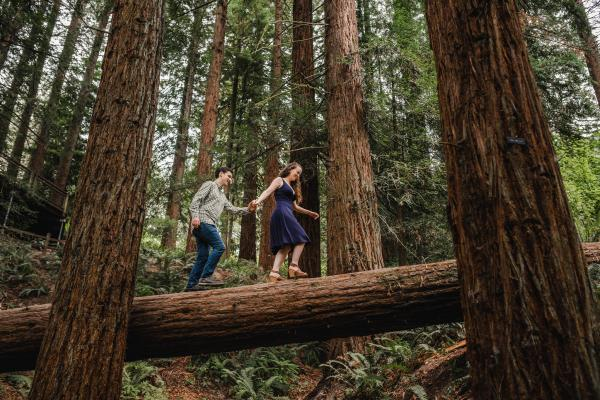 Hoyt Arboretum Engagement Session